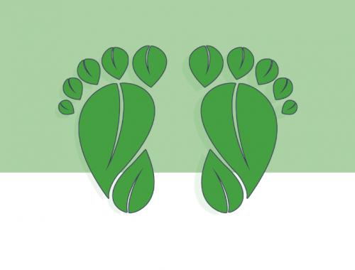 ¿Qué es la consultaría medioambiental?